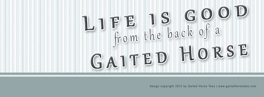Gaited Horse Tees free Life Is Good Facebook banner 1