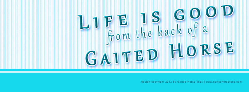 Gaited Horse Tees free Life Is Good Facebook banner 2