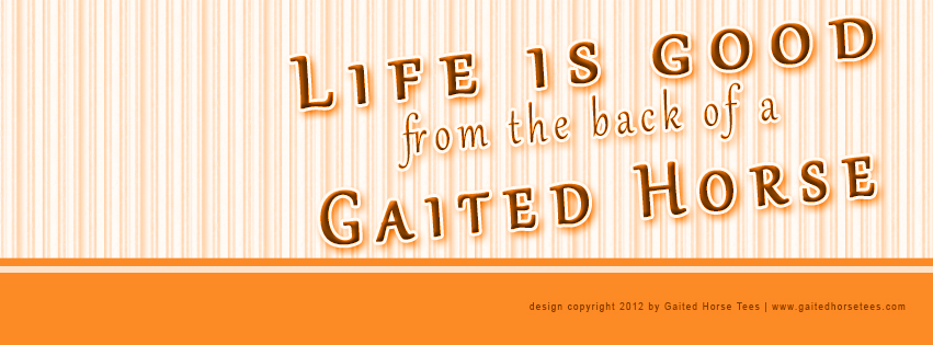 Gaited Horse Tees free Life Is Good Facebook banner 3