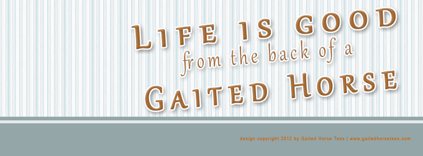 Gaited Horse Tees free Life Is Good Facebook banner 4