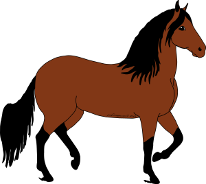 bay cartoon paso fino horse design